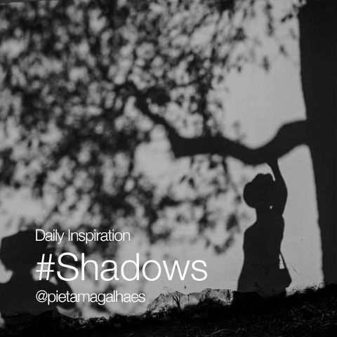 dailyinspirations shadows