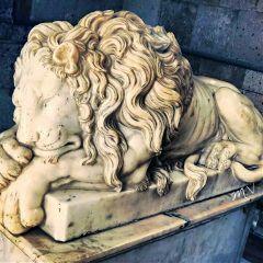 mexico lion arquitecture sculpture