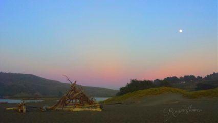 waphorizon beach nature colorful sunset
