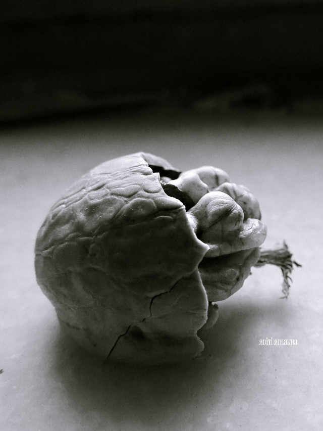 Walnuts.  Object study series.  #macro #photography #food #nuts #walnut #brain #blackandwhite #abstract #foodphotography