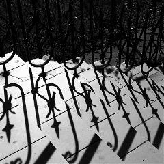 photography spring sun stairway blackandwhite