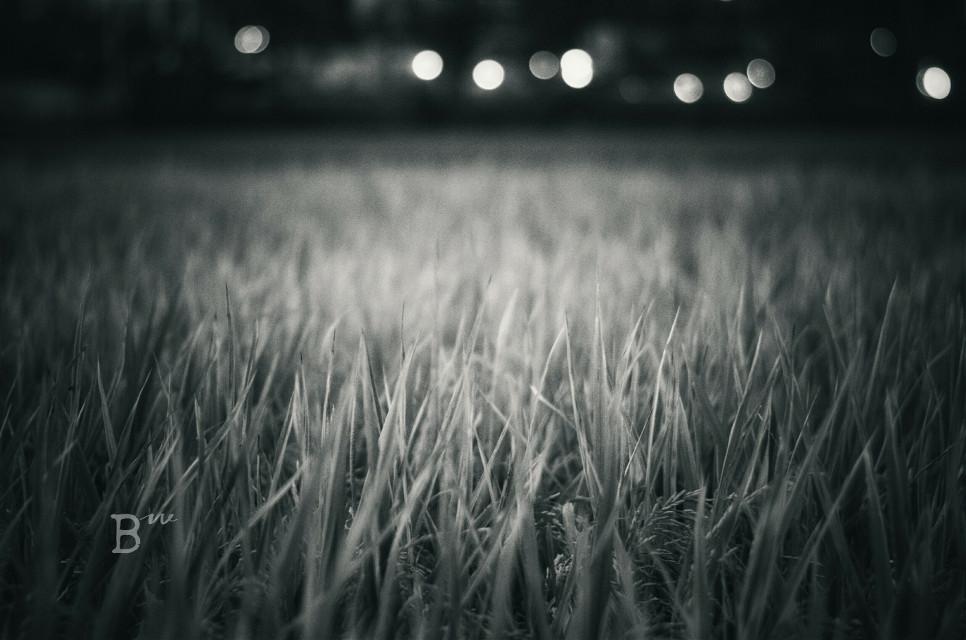 #photography #mono
