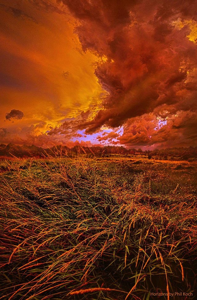 Horizons by Phil Koch  #colorful #colorsplash #emotions #flower #hdr #love #nature #photography #rain #summer #travel #landscapephotography #storm #peace #hope #sunset #weather #beauty #naturephotography #earthboundshots #horizons #country #Wisconsin