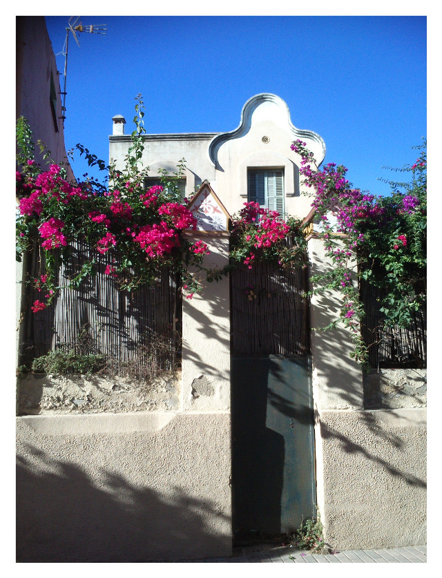 #house #architecture  #arquitectura #design #jardin #arquitetura  #garden #modernismo  #modernism #casa