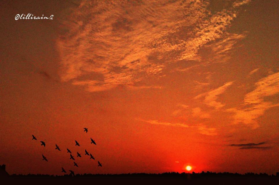 #photography #nature #colorful #sunrise gooooood mooooorning pa <3