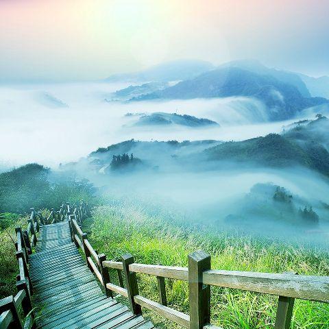 pathway woodenbridge hillside hill nature