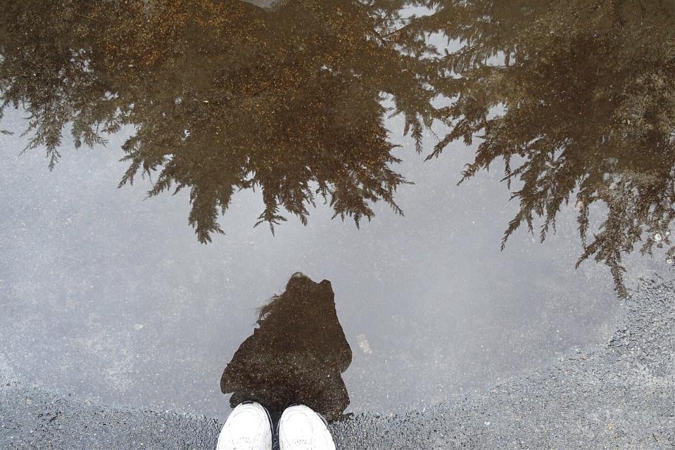#rain #blackandwhite  #wapshadows