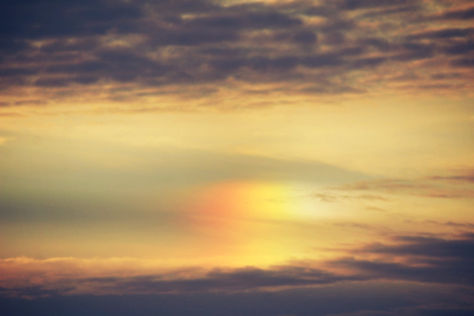 Cool little sundog  #nature #colorful #dodger #summer #outandabout #photography