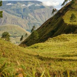 nature laketoba indonesian samosir hill