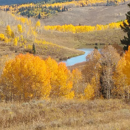 nature mountains colorado fallcolors aspen