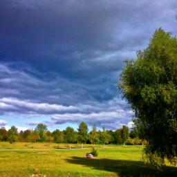 nature brandenburg
